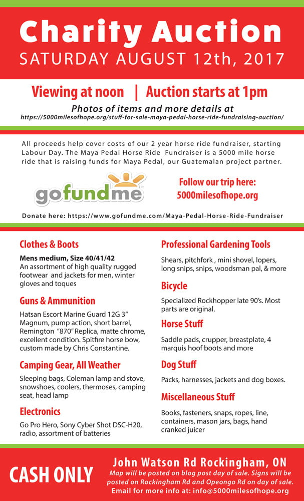 Macluckie-Auction-Flyer-v1.5-web