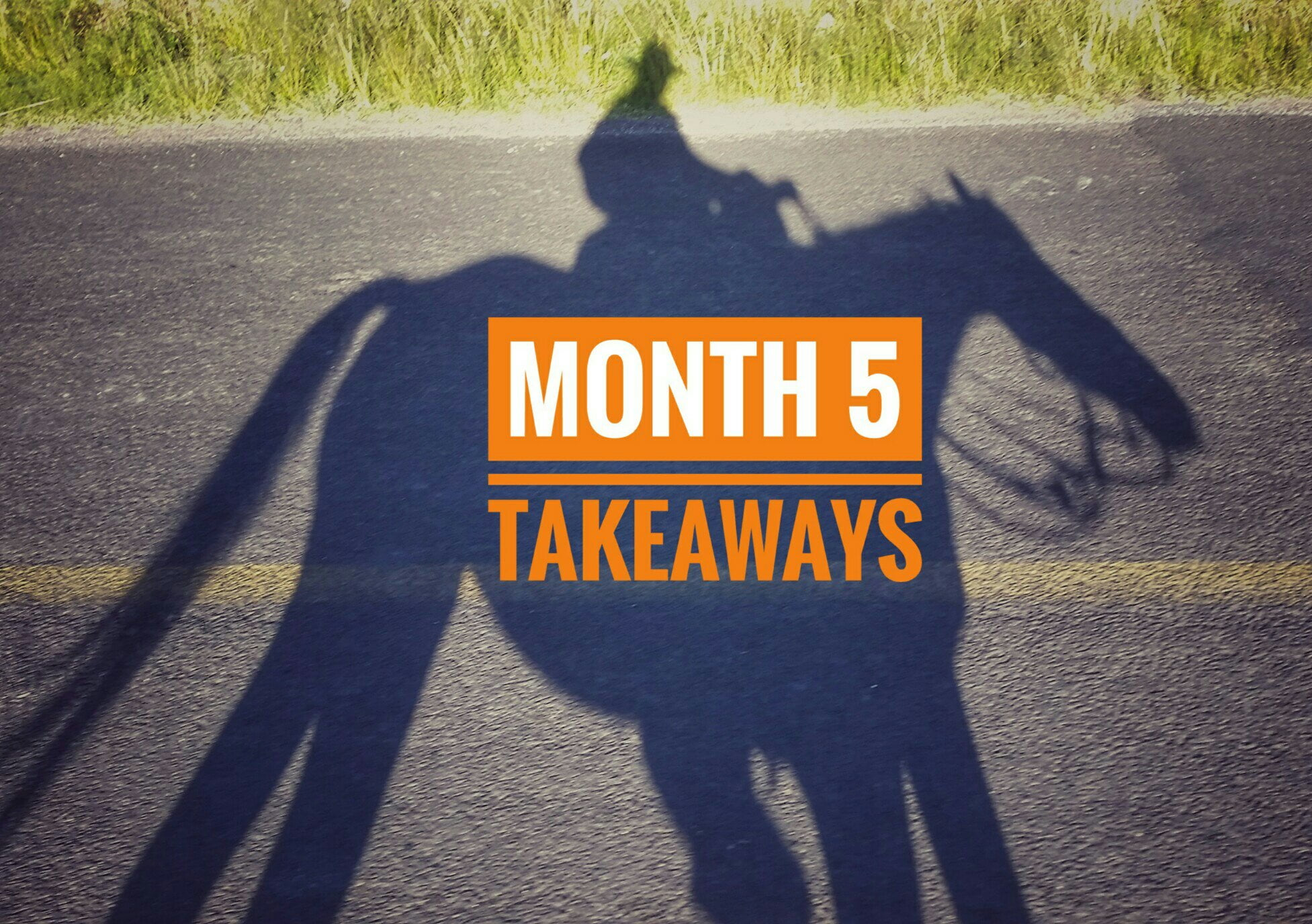 Month 5 | Takeaways
