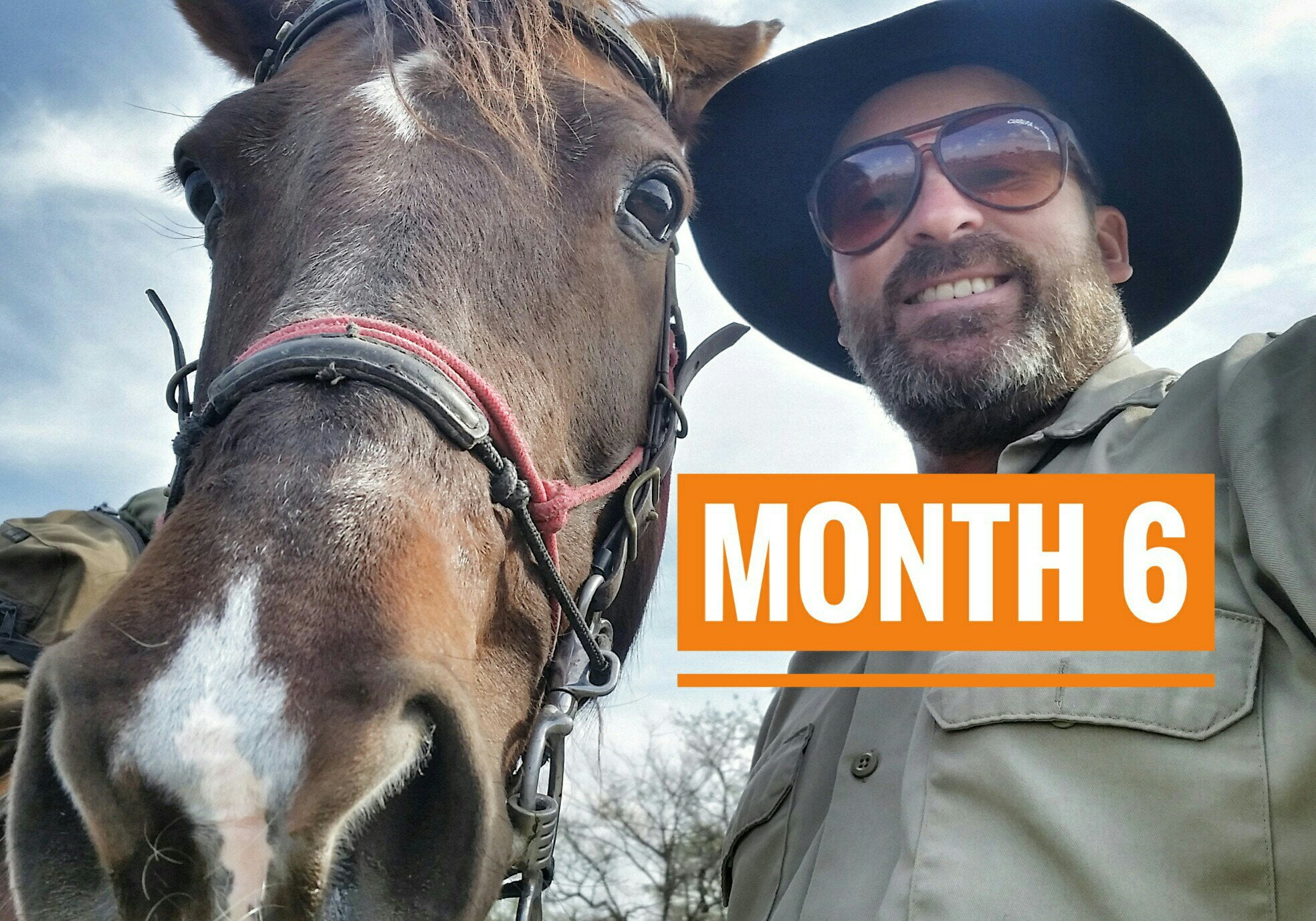 Month 6 | THE LAST MONTH