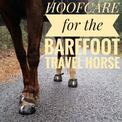 Hoofcare for the barefoot travel horse